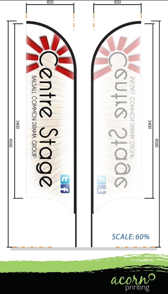 CS Flag Banner